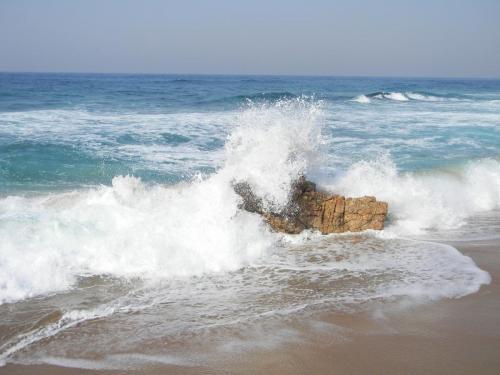 Hibberdene waves breaking on the beach